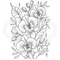 Creative Expressions Designer Boutique Collection A6 Clear Stamp - Orchids in Bloom